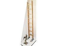The Janus scale / L'échelle de Janus