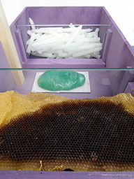 memoria 75 - Bee wax & Candles